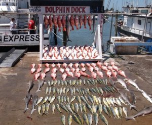 deep sea fishing texas dolphin dock